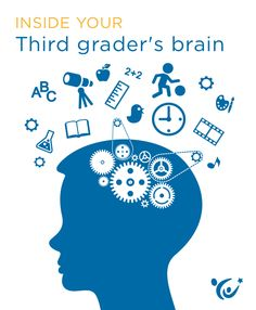 What insights can neuroscience offer parents about the mind of a third grader?
