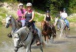 Cypress Trails, Houston horse stables :: Horseback riding Houston Equine Stables, trail riding in Houston, Endurance riding, Houston Enduran...