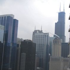 """The Sears """"Willis"""" Tower. the loop, chicago"""