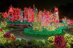 DisneyWorld at Christmas :)
