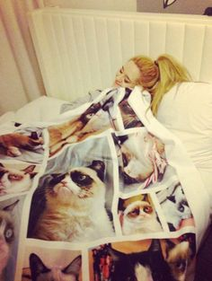 Sometimes happiness means snuggling with a Grumpy Cat blanket… I need this. @Maxine Lim Lim Lim major