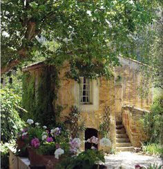 The house I will live in at 80, painting and reading after I garden.