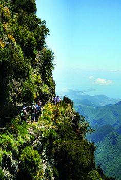 Levada Walking. More information about Madeira go to http://www.portobay.com/DestinationNode.aspx?areaId=492 #Portugal
