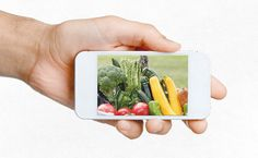 Buying Local Food — On Your Phone - Modern Farmer