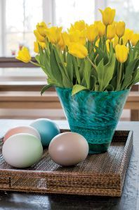 Spring | Crate and Barrel