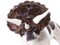 Amazon.com: Animal Planet PET20104 Triceratops Dog Costume, Large: Pet Supplies