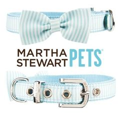 The #MarthaStewartPets Spring 2014 line features #seersucker and #bows. Exclusively at #PetSmart.