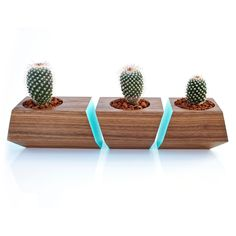 3 Pc. Solid Walnut Wood Planters in Turquoise $79.99
