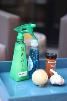 Mosquito repellant for the door.In your blender, combine 1 small onion, 1 head of peeled garlic, 4 cups water, and 1½ tablespoons cayenne pepper. After blending, add a tablespoon liquid dish soap and strain into a spray bottle. Spray around your deck and anywhere else you'd like to repel bugs—it's safe for kids and pets! Spray around your yard once a week to keep bugs away for good.