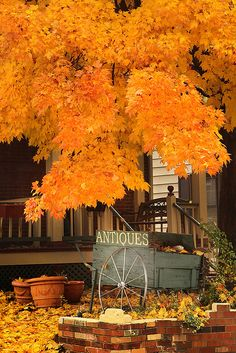 Nothing better than going for a drive in the countryside on a fall afternoon and seeing the #antiques sign! - gypsy18