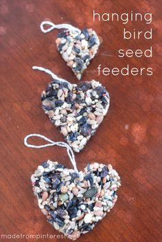 DIY Hanging Bird Seed Feeders