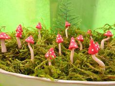 Miniature mushrooms for fairy gardens and terrariums, add a splash of magic to any ordinary arrangment