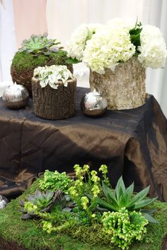 Succulents and hydrangea floral arrangements | Contemporary Floral