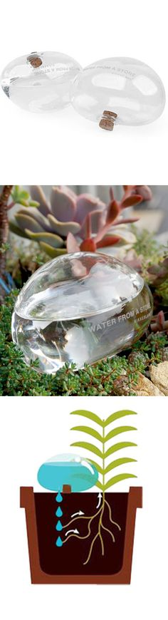 Glass stone slowly waters your plant. Great for when you're traveling. | goplaceit.com