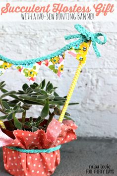 11 Succulent Hostess Gift with a no-sew bunting banner
