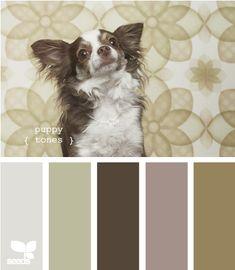 Puppy tones...
