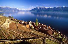 Lavaux Terraces, Switzerland