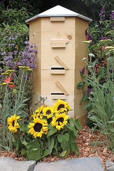 Bee hives!