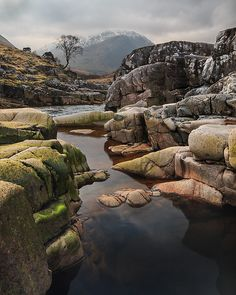 Rock Pools in Scotland