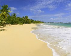 martinque beaches - Bing Images