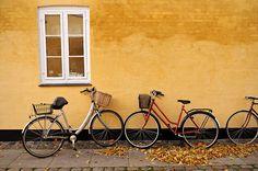Bicycles family - Copenhagen