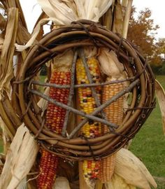 Corn and Pentacle