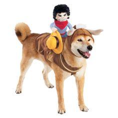 Dog cowboy halloween costume