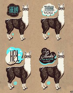 Llama-rama #typography #illustration