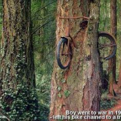 A boy goes to war in 1914 and leaves his bike chained to a tree.