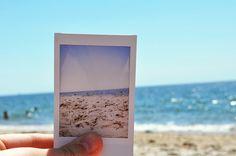 polaroid paradise