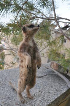 Needle Felted  Animal. Slender. Tailed  Meerkat. by darialvovsky