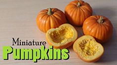 Miniature Pumpkins For Fall & Halloween - Polymer Clay Tutorial