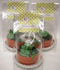 gift, succulent plants, cooki, wedding edible favors