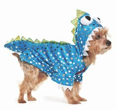 Are you excited for Halloween? Look through our #MarthaStewartPets Halloween Costumes at #PetSmart!