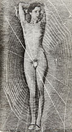 Spider Woman  1929  MAN RAY.
