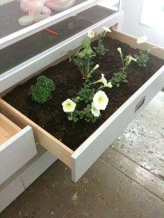 flower drawers