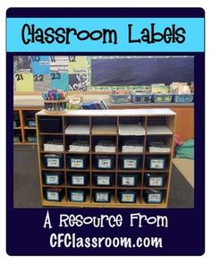 Ready made classroom supply labels (still leaves room for different papers to be sorted into cubbies)