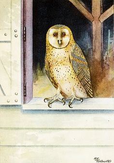 From Collagecandy.blog - an 1917 illustration of a barn owl  (I have barn owls from time to time) liked the graphic