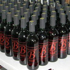 Baumberger Vineyard & Winery near Colman, SD