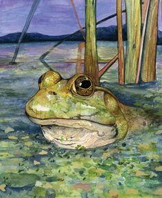 frog watercolor