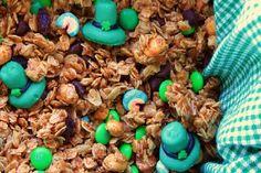 Leprechaun's Granola - 10 Fun St. Patrick's Day Foods - ParentMap