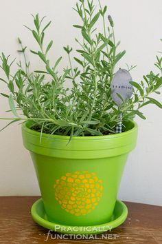 Did you know you need to seal painted flower pots so the paint job isn't ruined when you water your plants? This step by step tutorial shows you how!