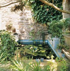 Un pequeño estanque, con nenúfares, que decoran la alberca y depuran el agua