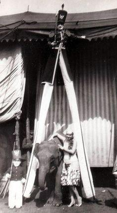 Ringling-Barnum Circus