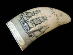 Genuine Antique Whale Tooth Scrimshaw