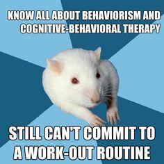 psychology major rat | Tumblr