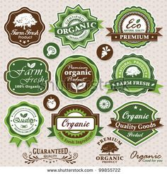 Collection Of Eco And Bio Labels, Badges And Icons Stock Vector 99855722 : Shutterstock
