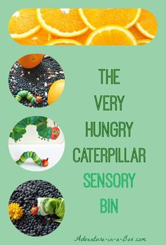 The Very Hungry Caterpillar Sensory Bin: have a fun snack and bring kids' favourite picture book to life with this simple activity