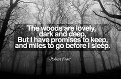 books, hipsters, quotes, butterflies, wood, robert frost, sleep, evenings, halloween