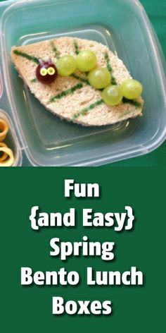 Fun {and Easy!} Spring and Easter Bento Boxes
